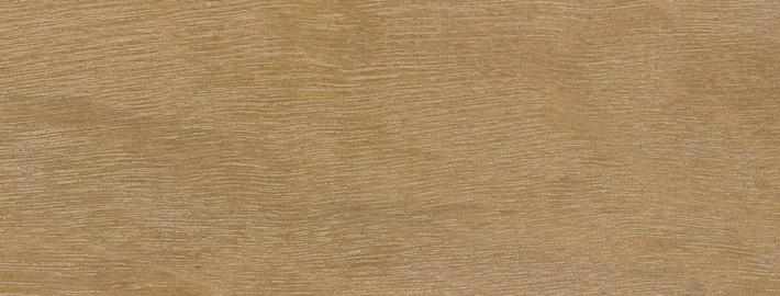 Massiivipuu Eucalyptus - Skandinaviska Träimport