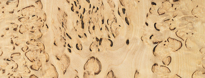 Visakoivu Massiivipuu - Skandinaviska Träimport